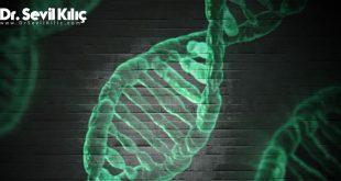 Bağışıklık sisteminizi güçlendirmek için ipuçları